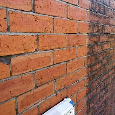 Using chemicals to gently clean brick/stonework.